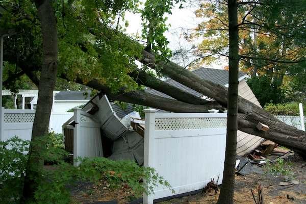 hurricane damage cleanup, tree damage restoration, storm damage restoration